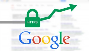Google indexes more intensely HTTPS pages